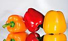 Gemüse_1